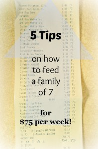 5 Tips on How To Feed A Family of 7 for Just $75 a Week! Plus Free Printable Meal Planning Guide Worksheet! This is great for meal planning and grocery budgeting!