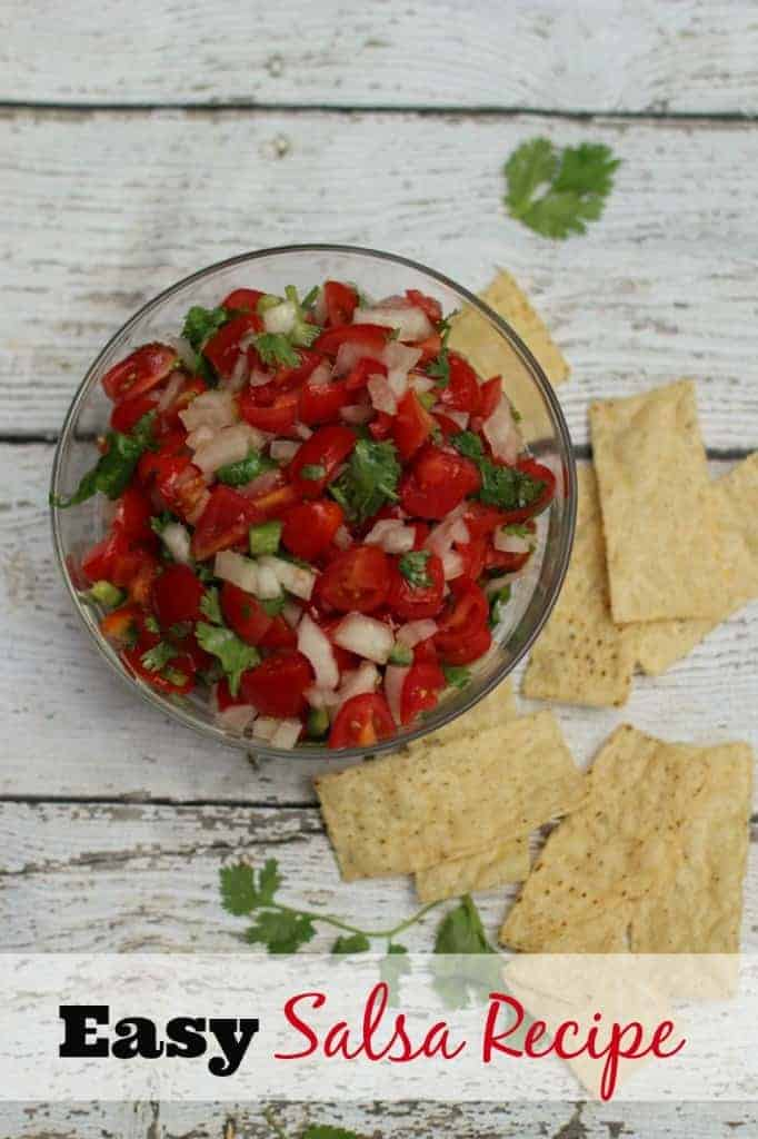 Recipe for Using the Garden Veggies | Healthy Salsa Recipe