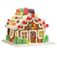 Wegmans gingerbreadHouse