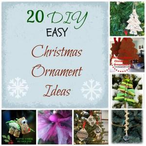 20+ DIY Christmas Ornament Ideas!