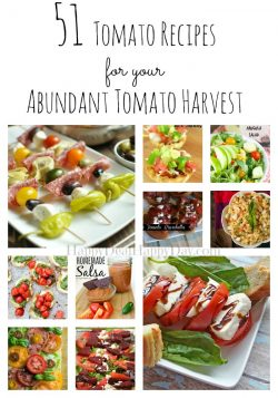 51 Tomato Recipes for Your Abundant Tomato Harvest