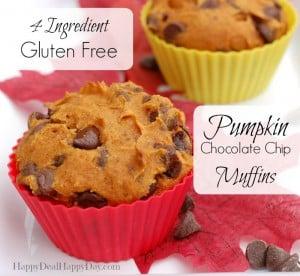 4 Ingredient, Gluten Free, Pumpkin Chocolate Chip Muffins