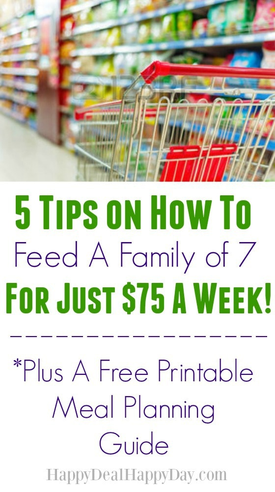 5 Tips on How To Feed A Family of 7 for Just $75 a Week ...
