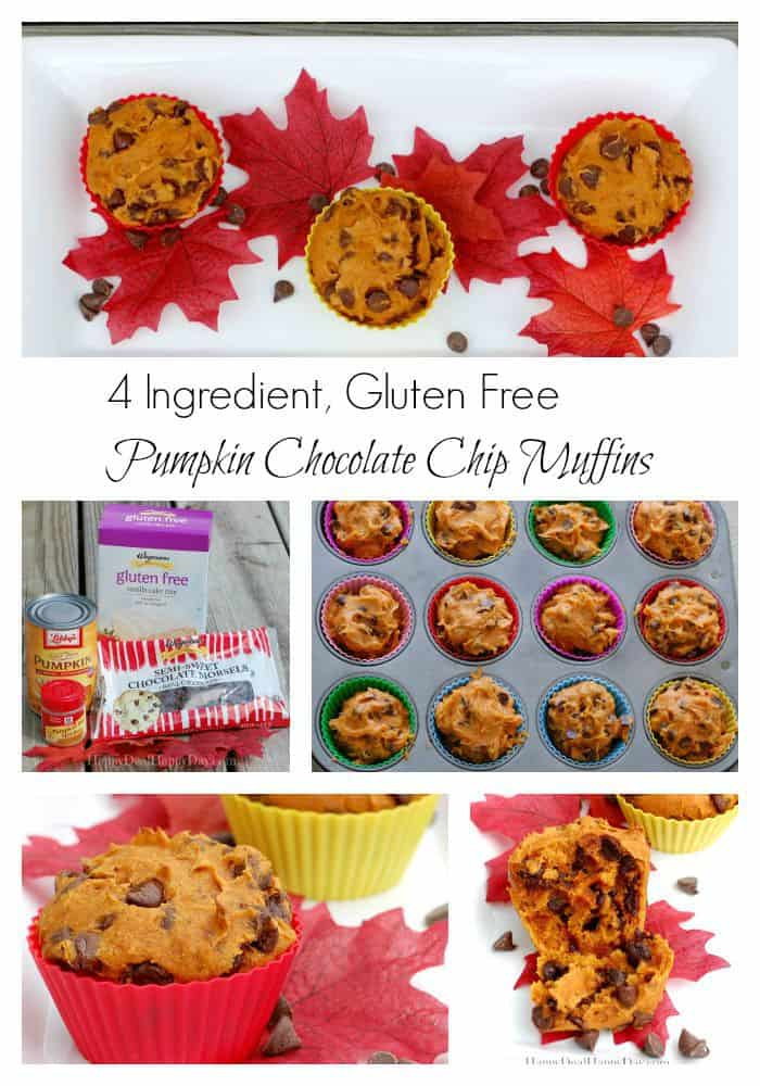 gluten free chocolate chip muffin