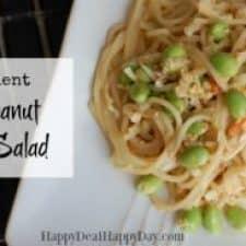Thai Recipes:  5 Ingredient Thai Peanut Lo Mein Salad