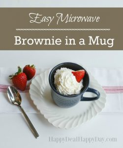 90 Second Easy Dessert Recipe:  Microwave Brownie in a Mug Recipe