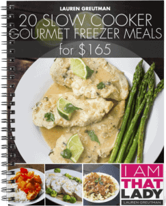 Aldi Meal Plan #3: 20 Gourmet Freezer Meals from Aldi for under $165