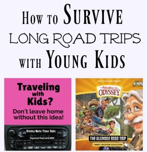 Survival Guide for Long Road Trips When Traveling with Kids