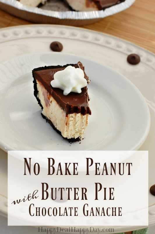 no-bake-peanut-butter-pie-11