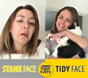 Tidy Cats® Stank Face