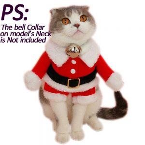 cat-suit