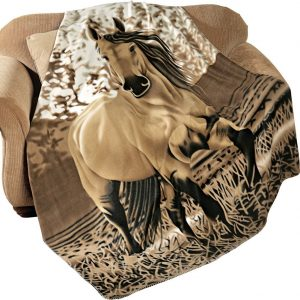 horse-blanket