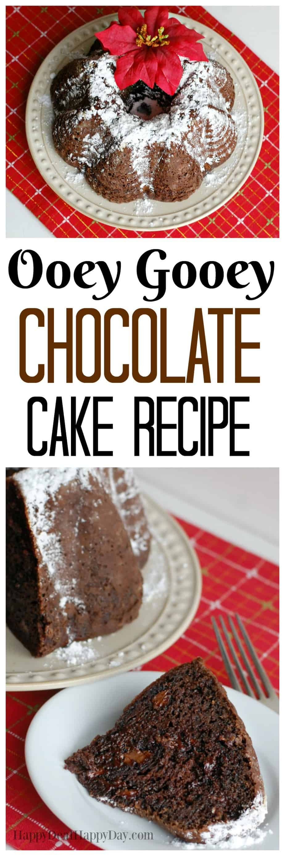 Ooey Gooey Chocolate Cake Recipe   Happy Deal - Happy Day!