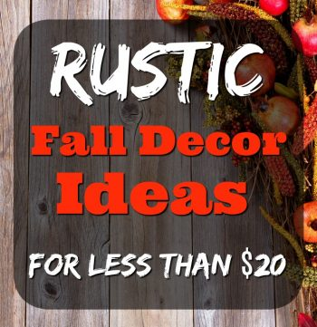 Rustic Fall Decor Ideas for Under $20