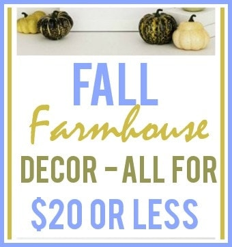Thanksgiving Farmhouse Decor Under $20
