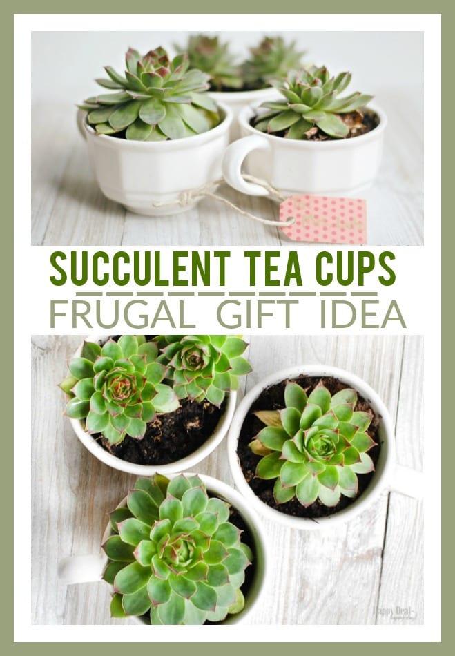 Succulent Tea Cups | Frugal Gift Idea
