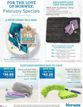 Norwex:  What's on Sale in February!